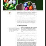 2016 WordPress Theme post no sidebar