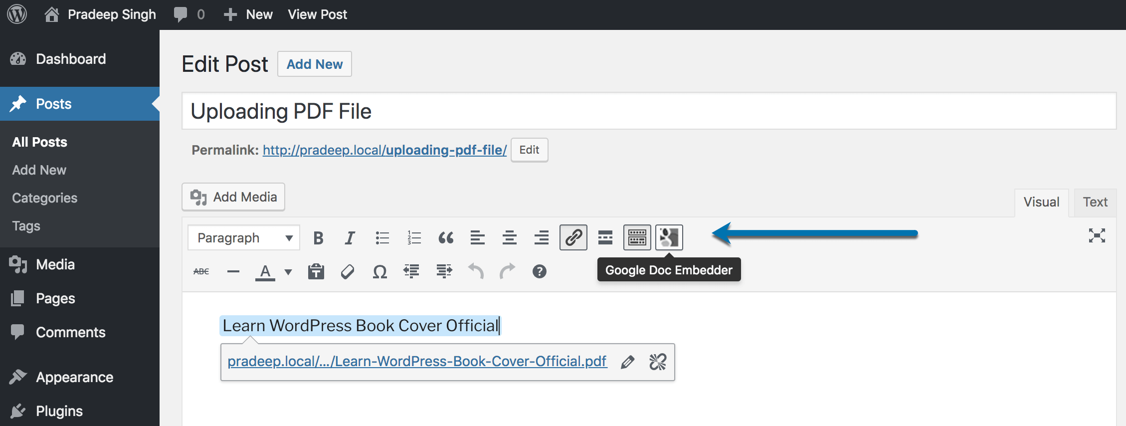 Google Doc Embedder Plugin sortcode Button